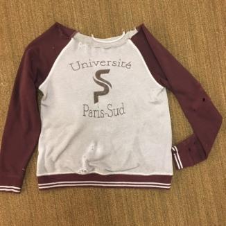 sws sweatshirt2